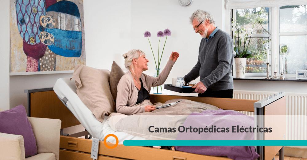 Venta Camas Ortopedicas Electricas